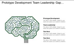 Prototype Development Team Leadership Gap Analysis Training Program