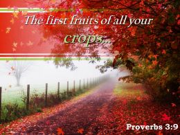 Proverbs 3 9 The First Fruits Of All Your Powerpoint Church Sermon