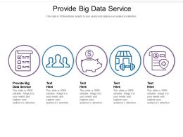Provide Big Data Service Ppt Powerpoint Presentation Slides Skills Cpb