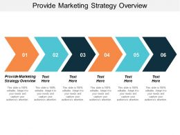 Provide Marketing Strategy Overview Ppt Powerpoint Presentation Icon Background Designs Cpb