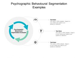 Psychographic Behavioural Segmentation Examples Ppt Powerpoint Ideas Cpb