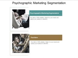 Psychographic Marketing Segmentation Ppt Powerpoint Presentation File Smartart Cpb