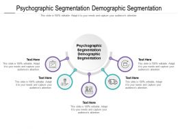 Psychographic Segmentation Demographic Segmentation Ppt Powerpoint Presentation Outline Templates Cpb