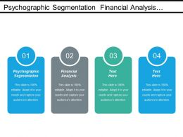 Psychographic Segmentation Financial Analysis Inventory Management Marketing Management Cpb