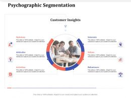 Psychographic Segmentation Interests M1626 Ppt Powerpoint Presentation Pictures Slide Download