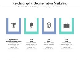 Psychographic Segmentation Marketing Ppt Powerpoint Presentation Layouts Diagrams Cpb
