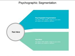 Psychographic Segmentation Ppt Powerpoint Presentation Gallery Elements Cpb