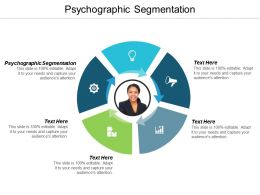 Psychographic Segmentation Ppt Powerpoint Presentation Styles Introduction Cpb