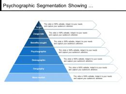 Psychographic Segmentation Showing Demographics Mass Market
