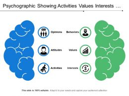 Psychographic Showing Activities Values Interests And Behaviour