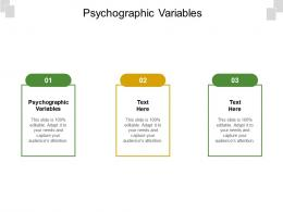 Psychographic Variables Ppt Powerpoint Presentation Inspiration Picture Cpb