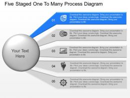 pu Five Staged One To Many Process Diagram Powerpoint Template