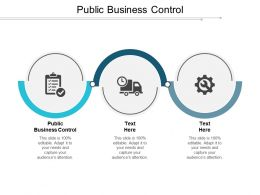 Public Business Control Ppt Powerpoint Presentation Gallery Design Ideas Cpb