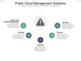 Public Cloud Management Solutions Ppt Powerpoint Presentation Styles Designs Download Cpb