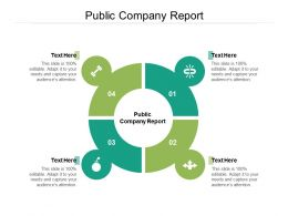 Public Company Report Ppt Powerpoint Presentation Infographics Gallery Cpb