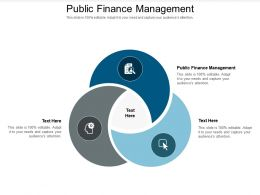 Public Finance Management Ppt Powerpoint Presentation Icon Graphics Tutorials Cpb
