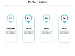 Public Finance Ppt Powerpoint Presentation Gallery Example Cpb