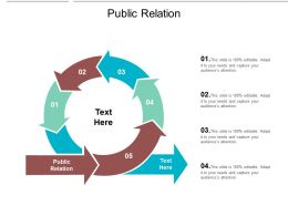 Public Relation Ppt Powerpoint Presentation Summary Vector Cpb