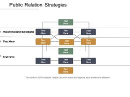 Public Relation Strategies Ppt Powerpoint Presentation Inspiration Sample Cpb