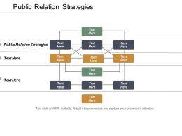 Public Relation Strategies Ppt Powerpoint Presentation Inspiration Sample Cpb
