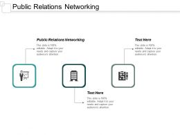 Public Relations Networking Ppt Powerpoint Presentation Inspiration Example File Cpb