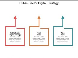 Public Sector Digital Strategy Ppt Powerpoint Presentation Show Background Cpb