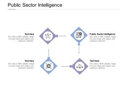 Public Sector Intelligence Ppt Powerpoint Presentation Layouts Example Cpb