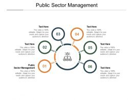 Public Sector Management Ppt Powerpoint Presentation Portfolio Graphic Cpb