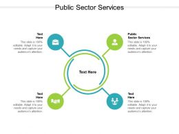 Public Sector Services Ppt Powerpoint Presentation File Layout Cpb