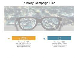 Publicity Campaign Plan Ppt Powerpoint Presentation Inspiration Maker Cpb