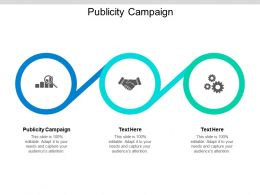 Publicity Campaign Ppt Powerpoint Presentation Layouts Graphics Example Cpb
