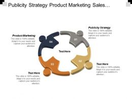 Publicity Strategy Product Marketing Sales Techniques Business Intelligence Strategies