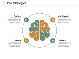 Pull Strategies Ppt Powerpoint Presentation File Information Cpb