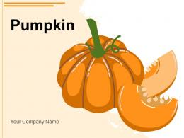 Pumpkin Depicting Beginning Photography Ground Besides
