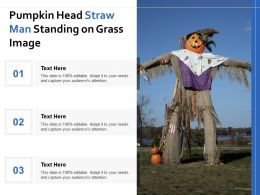 Pumpkin Head Straw Man Standing On Grass Image