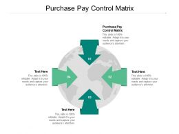 Purchase Pay Control Matrix Ppt Powerpoint Presentation File Inspiration Cpb