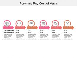 Purchase Pay Control Matrix Ppt Powerpoint Presentation Layouts Rules Cpb