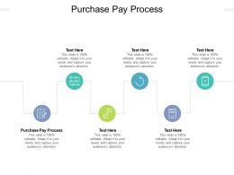 Purchase Pay Process Ppt Powerpoint Presentation Show Format Cpb