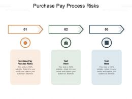Purchase Pay Process Risks Ppt Powerpoint Presentation Show Graphics Pictures Cpb