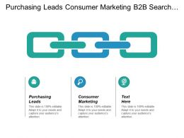Purchasing Leads Consumer Marketing B2b Search Engine Optimization Cpb