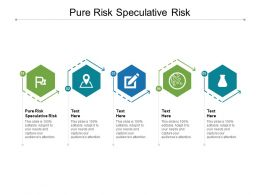 Pure Risk Speculative Risk Ppt Powerpoint Presentation Infographics Guide Cpb