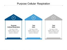 Purpose Cellular Respiration Ppt Powerpoint File Cpb