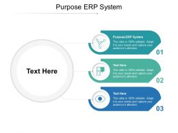 Purpose ERP System Ppt Powerpoint Presentation Diagram Lists Cpb