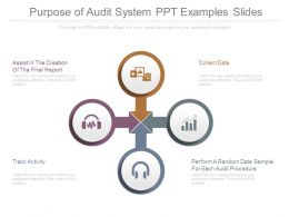 Purpose Of Audit System Ppt Examples Slides