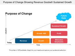 Purpose Of Change Showing Revenue Goodwill Sustained Growth