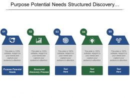 Purpose Potential Needs Structured Discovery Process Opportunity Landscape