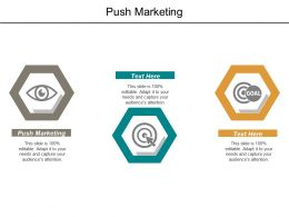 Push Marketing Ppt Powerpoint Presentation File Example Introduction Cpb