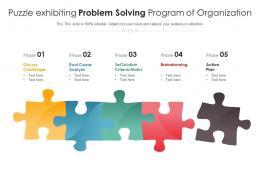 Puzzle Exhibiting Problem Solving Program Of Organization