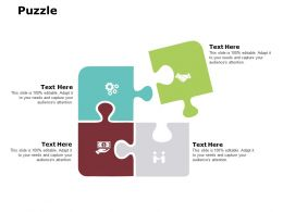 Puzzle Ppt Powerpoint Presentation Gallery Master Slide