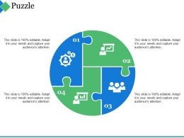 Puzzle Ppt Summary
